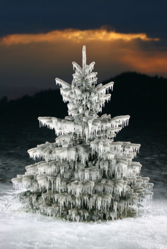 Can Catholics Celebrate the Winter Solstice? | Women of Grace