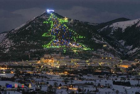 pope christmas tree - Worlds Largest Christmas Tree