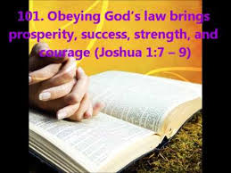 obedience24