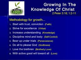 Virtue growing in 2