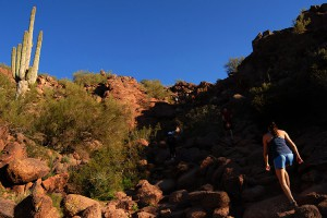 Along_Camelback_Mountain_trail_September_2008