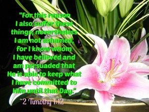 Suffering, 2 Timothy 1_12