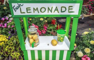 21735979 - charming fresh lemonade stand with jar full of lemons  garden design
