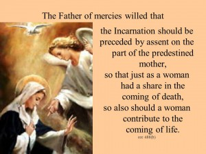 Predestination Mary's ccc 488 1