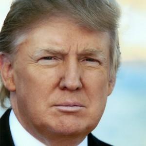 President-elect Donald J. Trump (R)