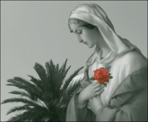 Mary Blessed-mother1Avangelista