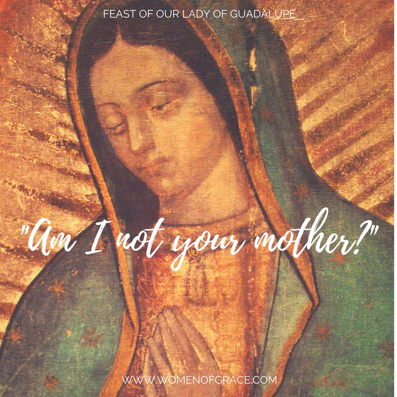 Our Lady of Guadalupe, Our Mother | Women of Grace